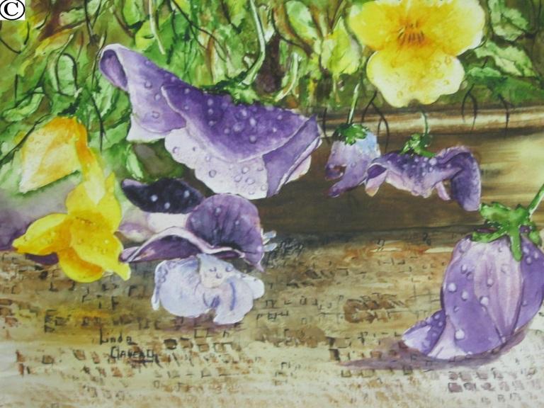 011 la rosée fleurie 8-10po